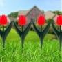 Virágágyás szegély - piros tulipánokból